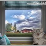ablakszigetelés nyáron